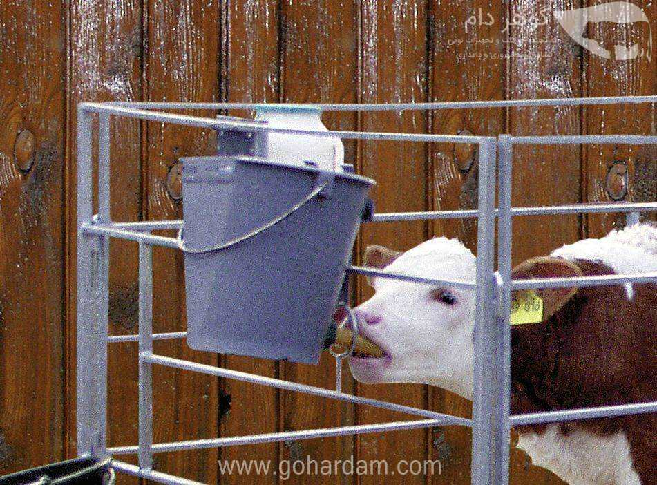 شیردهی گوساله با سطلهای 8 لیتری کربل (KERBL 8lit feeding bucket)