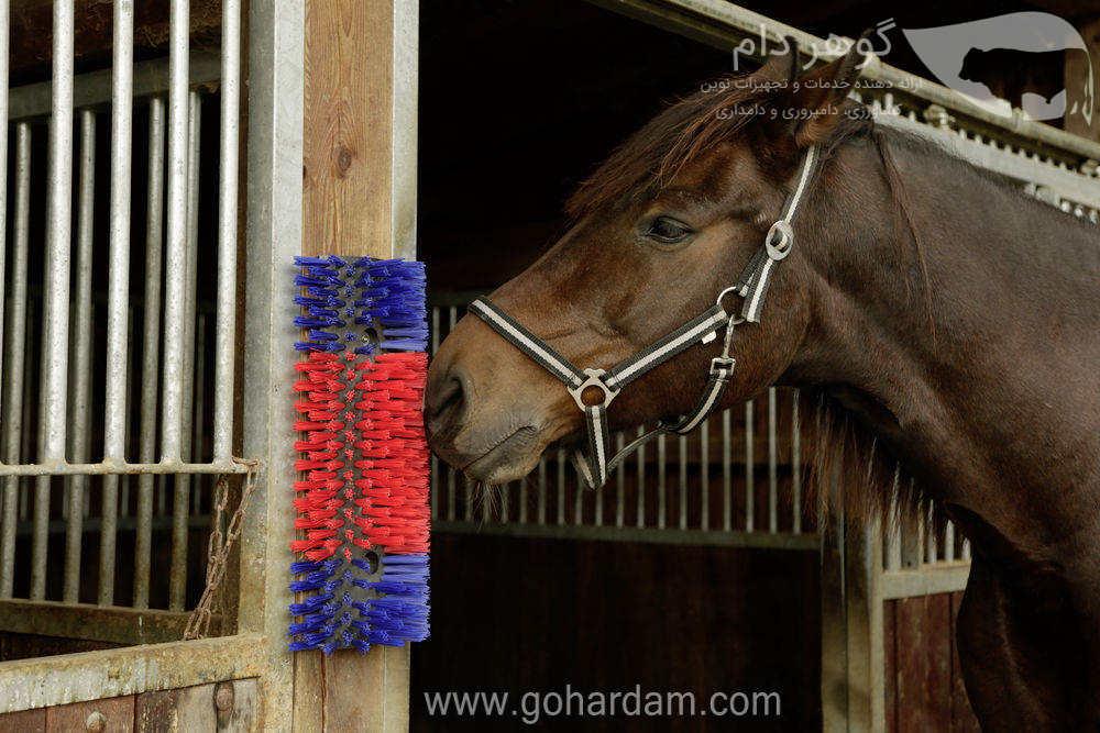 قشو ثابت اسب کربل (KERBL Scratch Brush for horse)